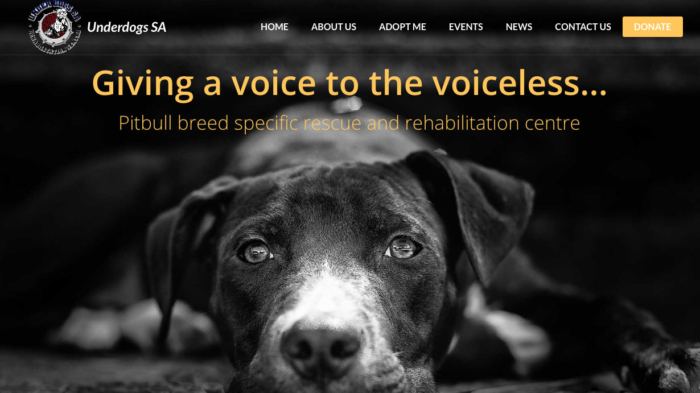 Underdogs Wordpress website